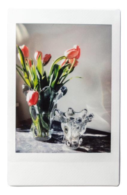 Artemis - Flowers Polaroid